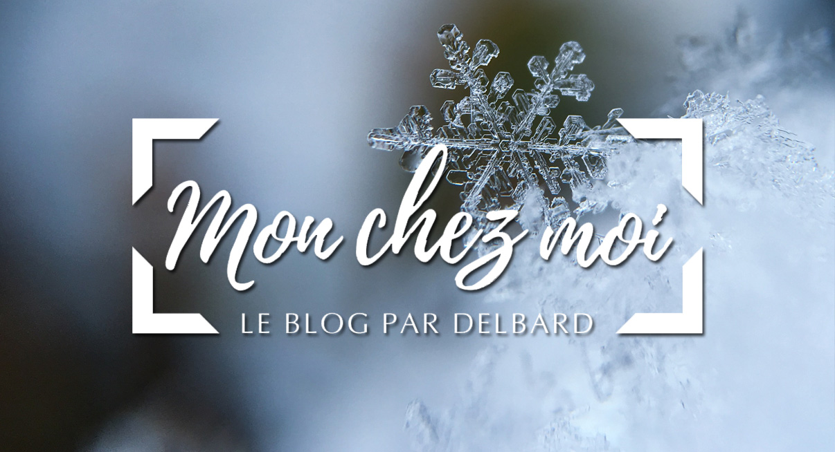 blog-delbard-jardin-neige-janvier-hiver