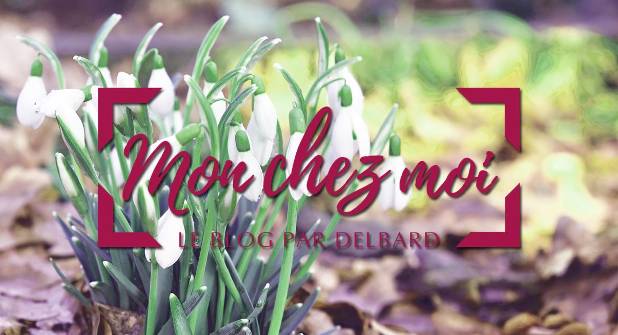 blog-delbard-jardin-janvier-nature-fleurs