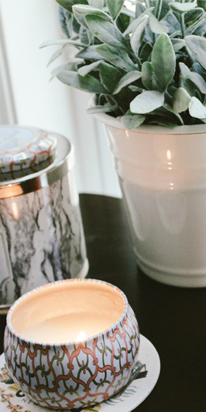 Blog-delbard-hiver-jardin-plante-intérieur-DIY-kokedama
