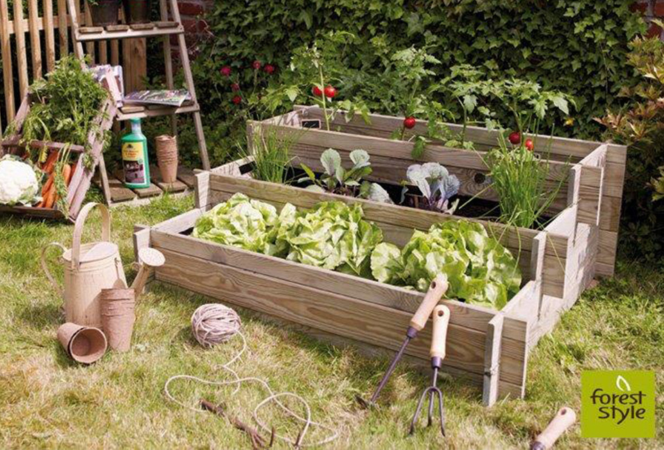 carre potager jardin conseils blog delbard forest style