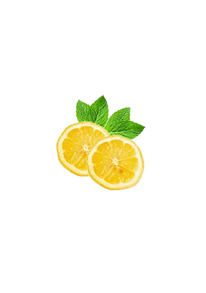 Citron agrumes travaux jardin entretien plantation Blog Delbard