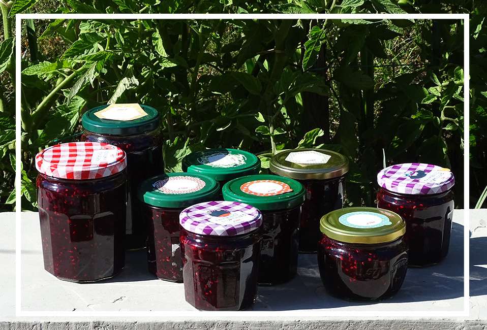 confiture ete fruits myrtille framboises groseilles cuisine recette blog delbard