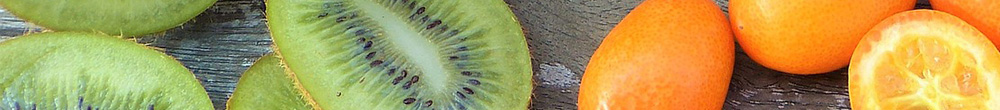Kiwi fruit floraison octobre fructification Blog Delbard