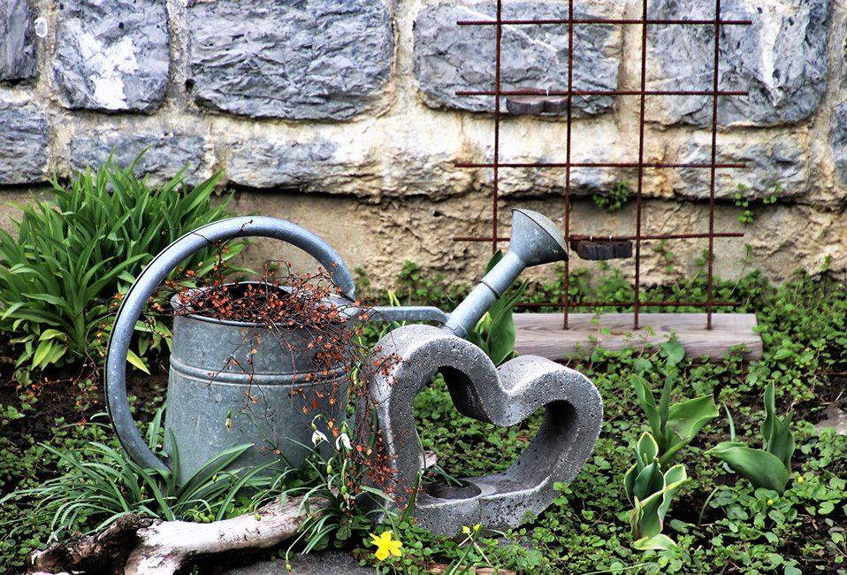 Entretien arrosage plantes jardin températures soleil été eau Blog Delbard