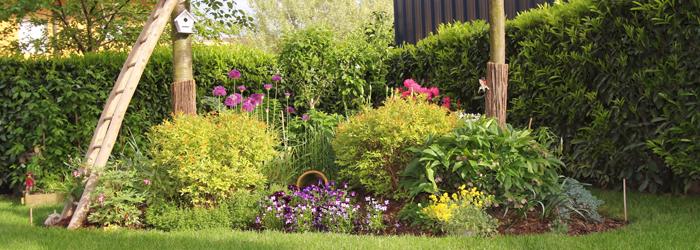 vivaces delbard jardin blog
