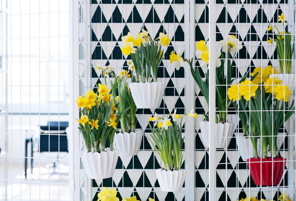 Narcisse jaune design plantation entretien arrosage conseils maison jardin plante blog delbard