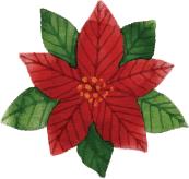 Poinsettia-blog-delbard-jardin-noel-décembre