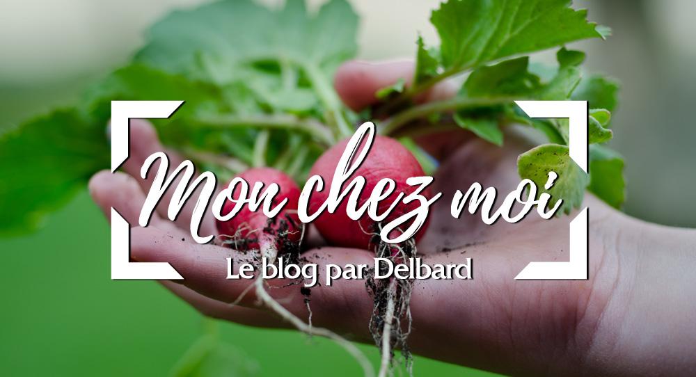 radis-jardin-potager-blog-delbard