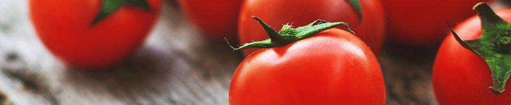 Tomates entretien soins mûres jardin plante extérieur Blog Delbard