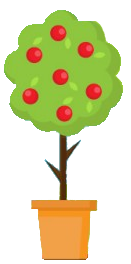 abricotpot