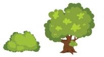 jardin ornement arbres arbuste blog delbard jardin
