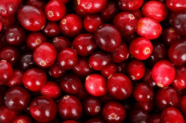 Petits fruits vitamine septembre delbard jardin blog