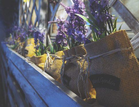 Les soins sur la terrasse d'été