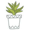 alocasia-blog-delbard-jardin-plante