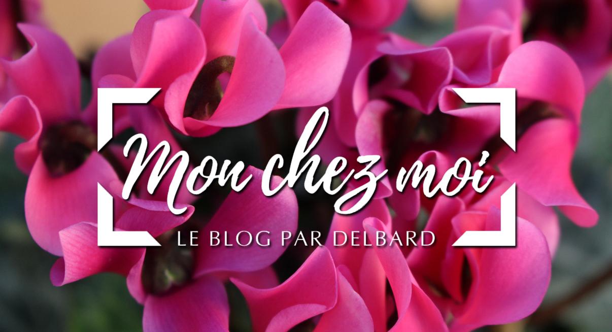 jardin-blog-delbard-cyclamen-plante-automne-conseils