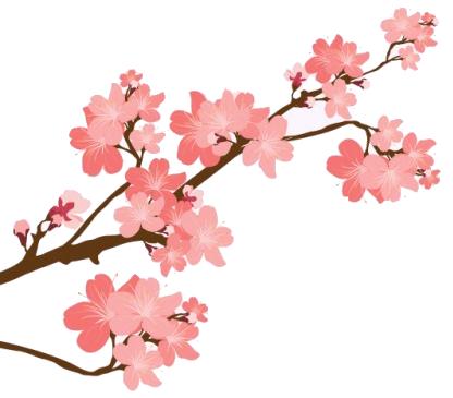 Cerisier Blog Delbard