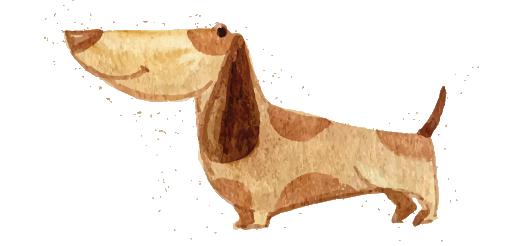 chien-blog-delbard-jardin-tiques
