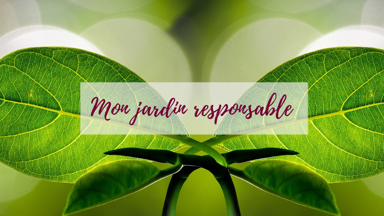 Blog-jardin-écologie-delbard-conseils-bio