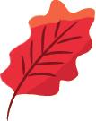 feuille-blog-delbard-jardin-conseils
