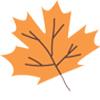 delbard-blog-jardin-potager