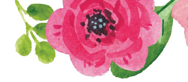 fleurs-blog-delbard-jardin-hiver-décoration