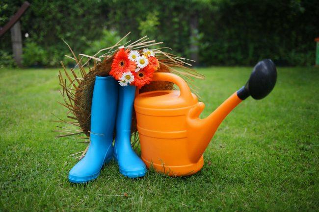 Travaux jardin août été saison plantation récolte fruits légumes plantes Blog Delbard