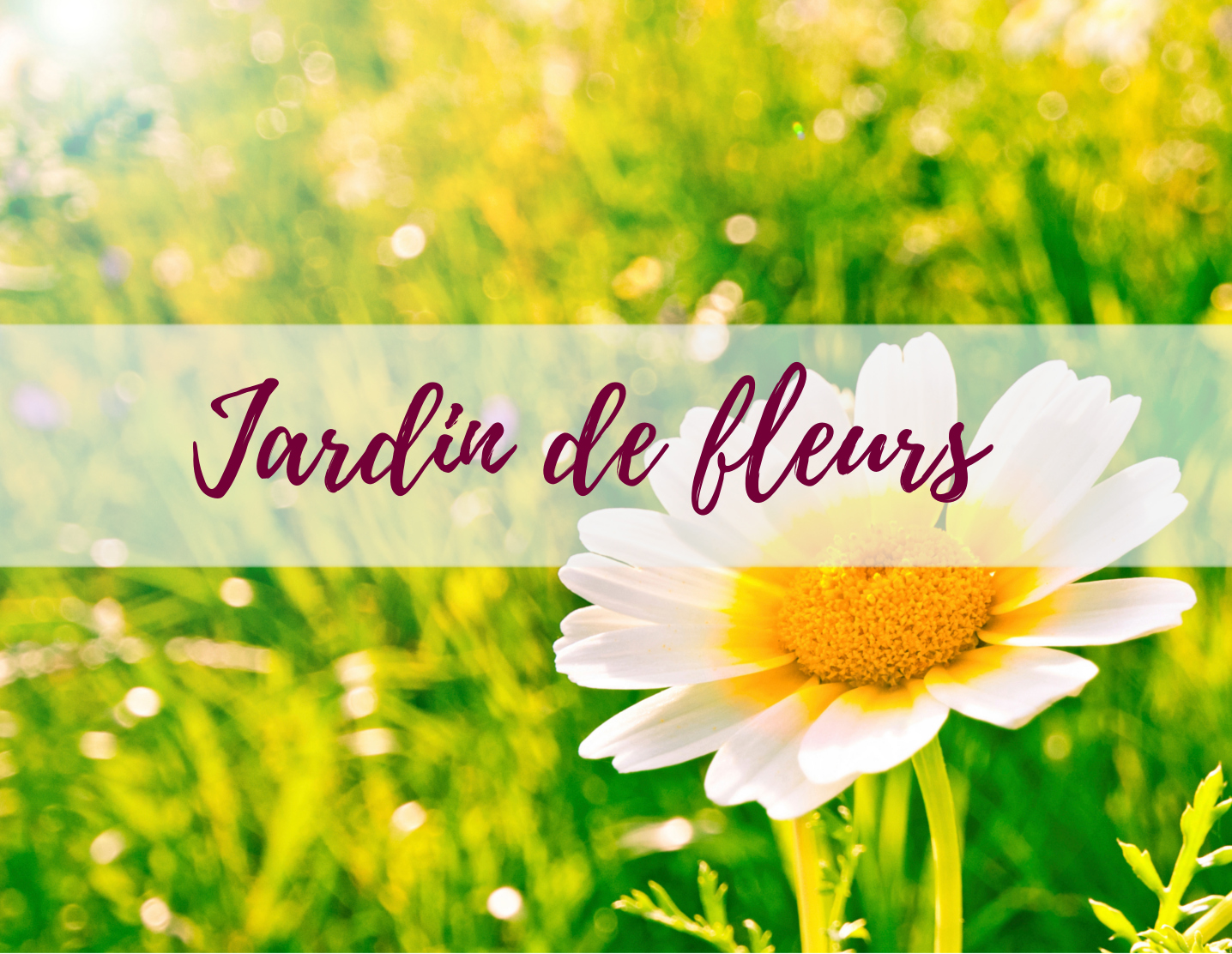 blog-delbard-jardin-conseils-plante