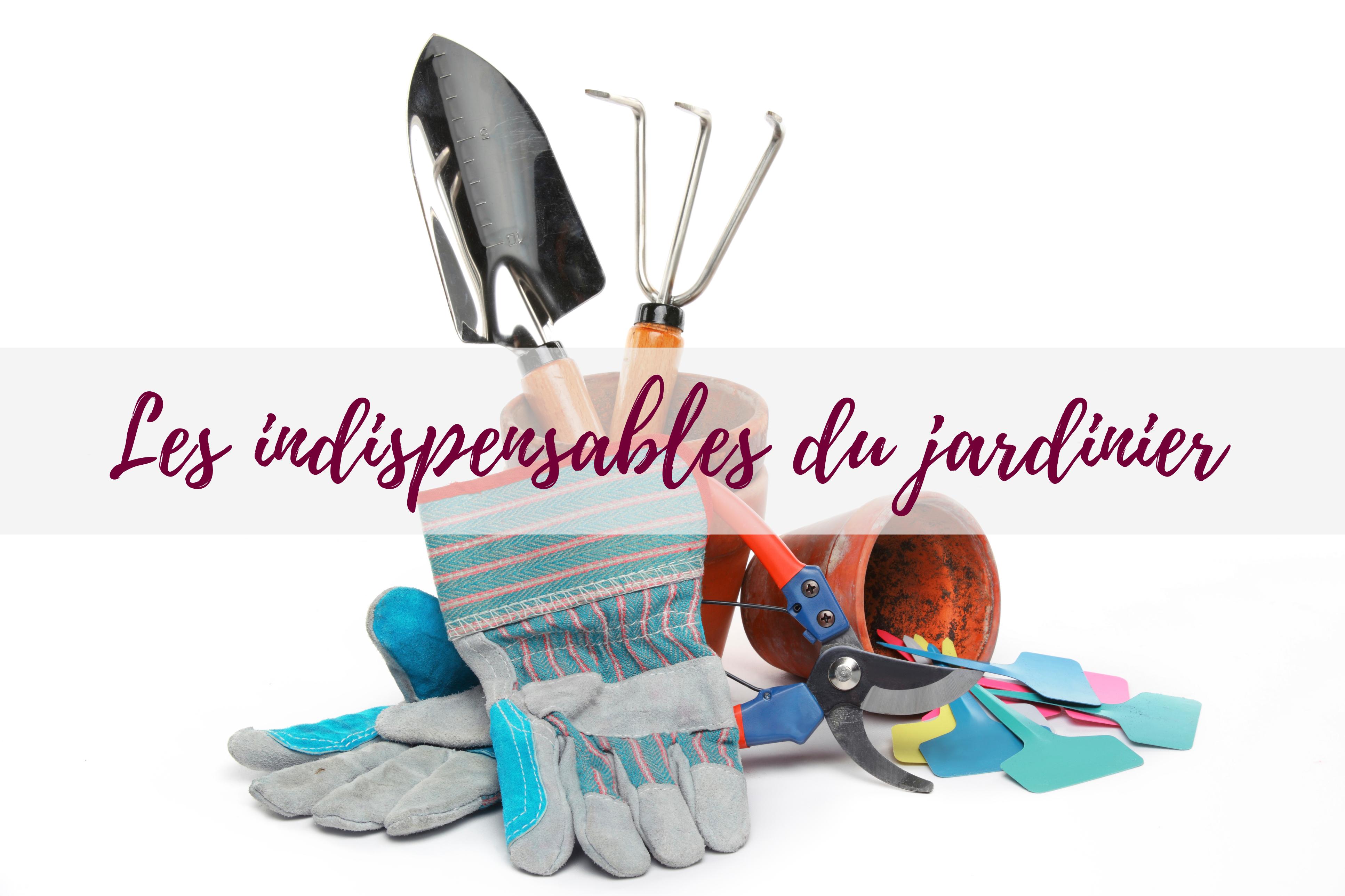 blog-jardin-delbard-outillage-conseils-outils-