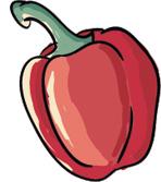 poivrons-blog-delbard-jardin