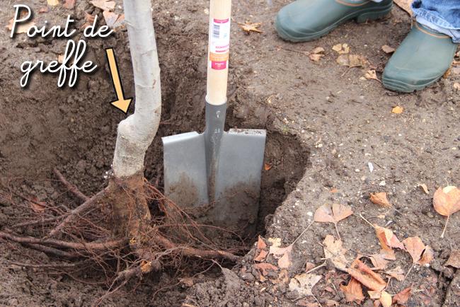 creuser trou sainte catherine