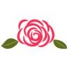 rosiers roses rose blog delbard jardin