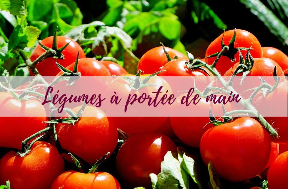 Blog-jardin-potager-delbard-conseils-légumes
