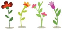 Vivaces-blog-delbard-jardin-fleurs